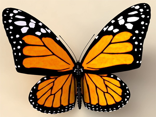 MONARCH BUTTERFLY SYMBOL OF MK-ULTRA MIND CONTROL PROGRAMMING